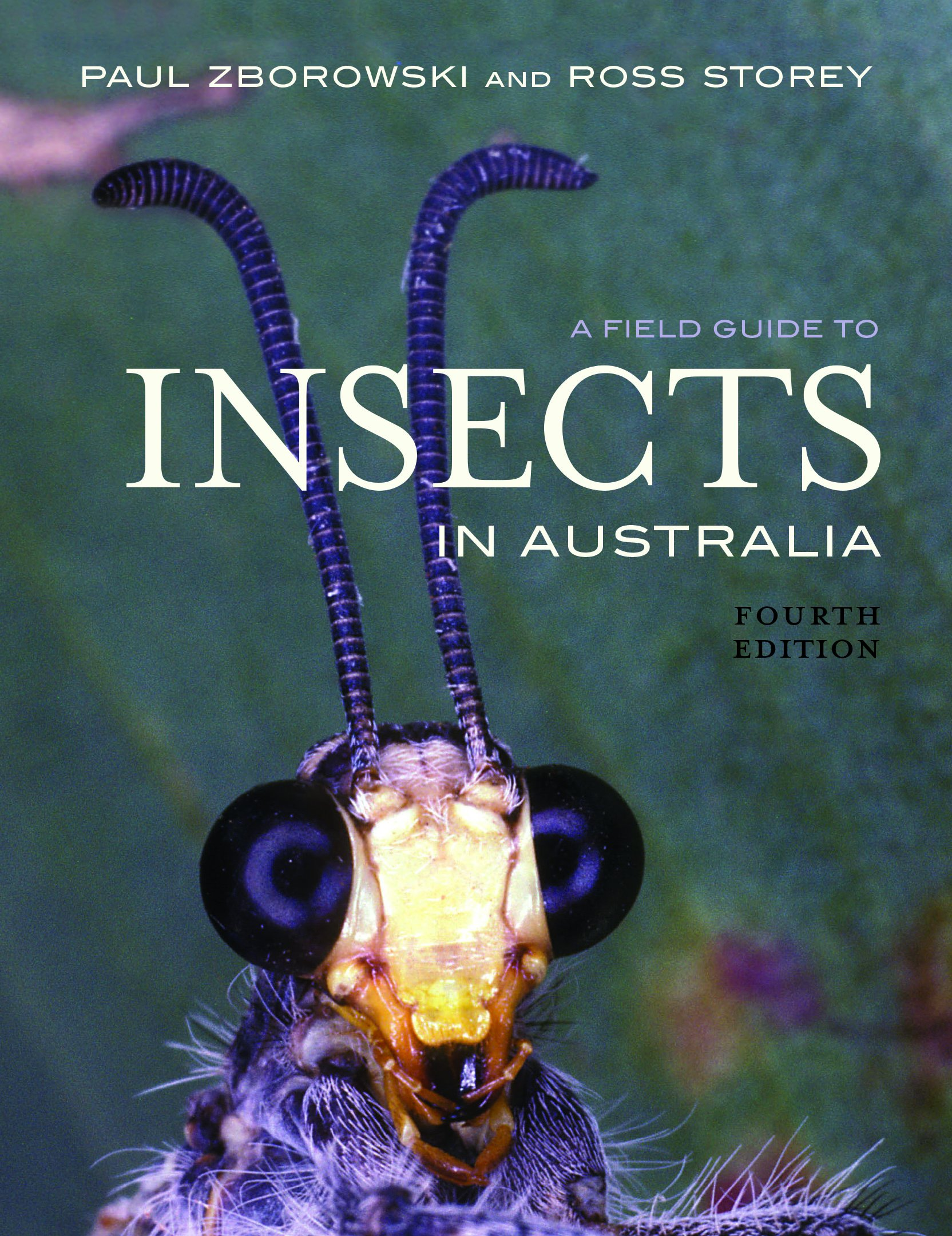 A Field Guide To Insects In Australia, by Paul Zborowski and Ross Storey
