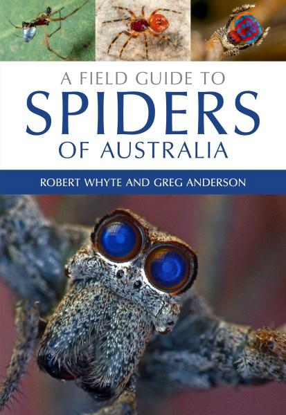 A Field Guide to Spiders of Australia, by Robert Whyte and Greg Anderson - Huntsman Spider - Isopeda sp.