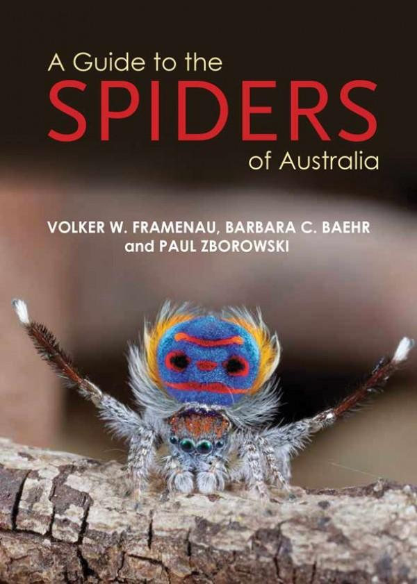 A Guide to the Spiders of Australia, by Volker W. Framenau, Barbara C. Baehr, and Paul Zborowski
