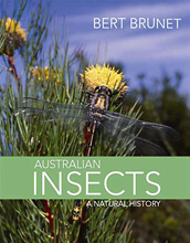 Australian Insects: A Natural History, by Bert Brunet