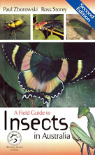 A Field Guide to Insects in Australia, Paul Zborowski and Ross Storey
