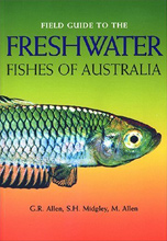 Field Guide to Freshwater Fishes of Australia G.R. Allen, S.H. Midgely and M. Allen.