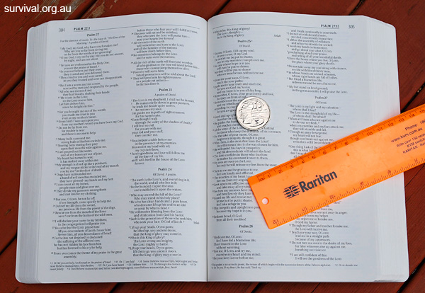 Page view of the Waterproof Bible by Bardin and Marsee Publishing