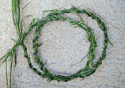 How To Make Cordage from Mat Rush -  Finished Cordage