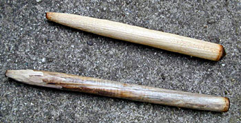 Bow Drill and Hand Drill Firemaking Woods - Drills