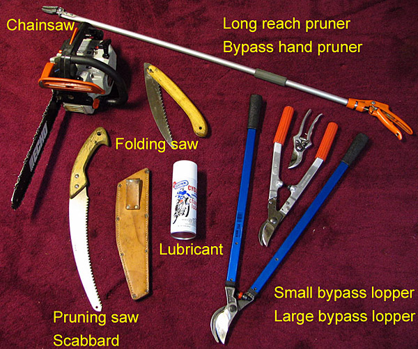 The Basic Gardening Tools