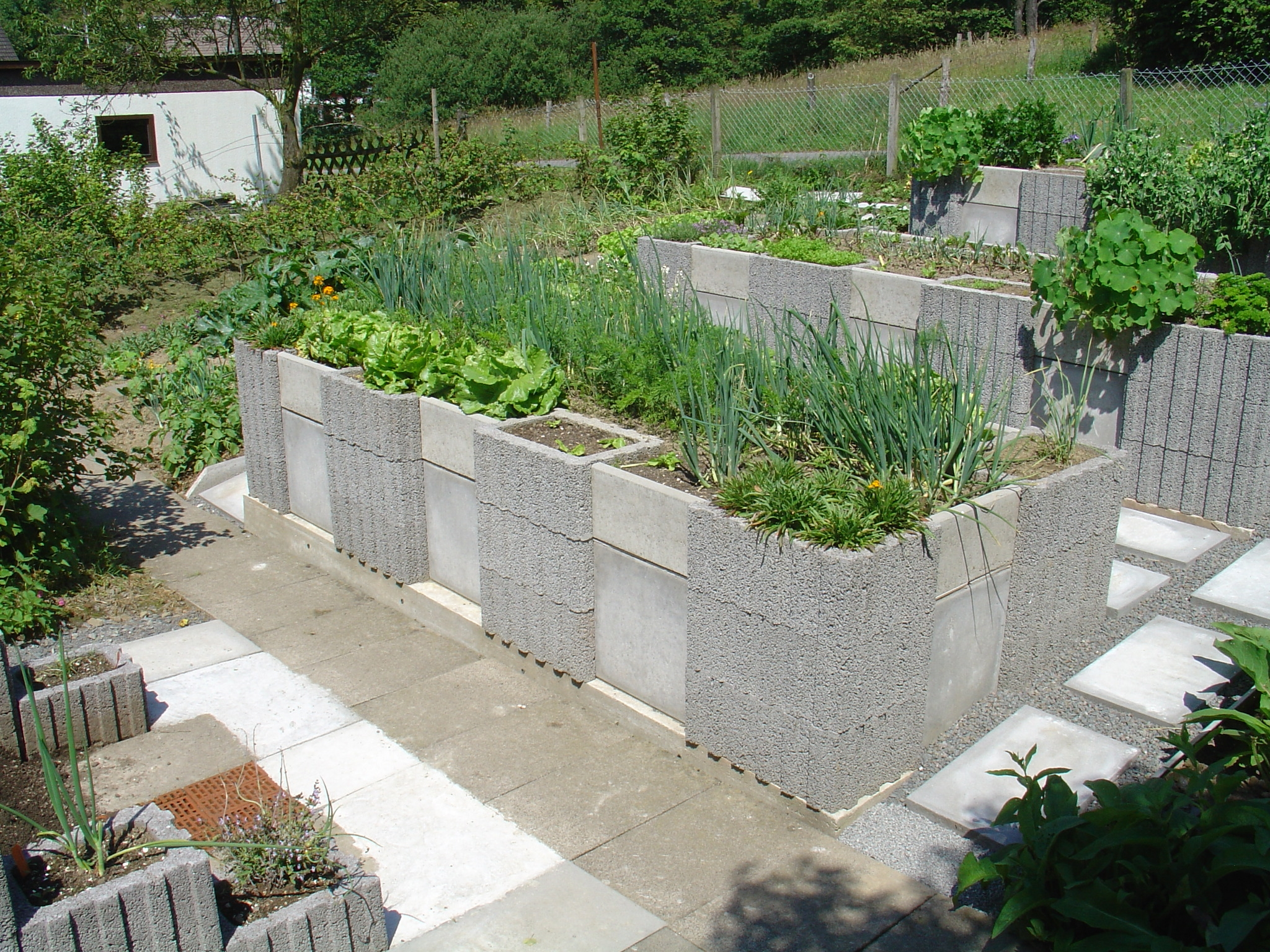 Raised bed garden on pinterest raised beds raised Raised garden beds