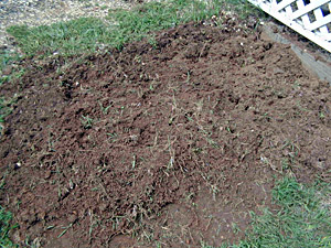 Starting a Vegetable Garden - Newly Turned Earth